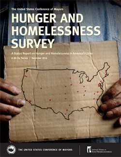 Hunger and Homeless Survey cover